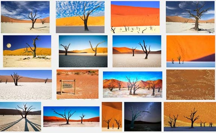 Screen capture of Google image search for Deadvlei