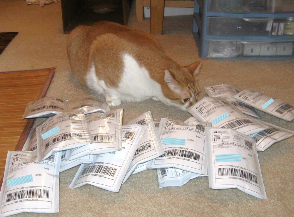 Cat with pile of padded envelopes